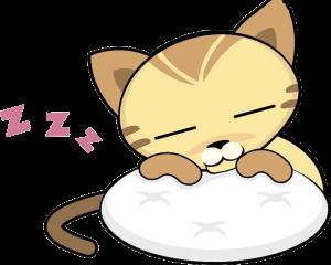 Petit chat qui dort