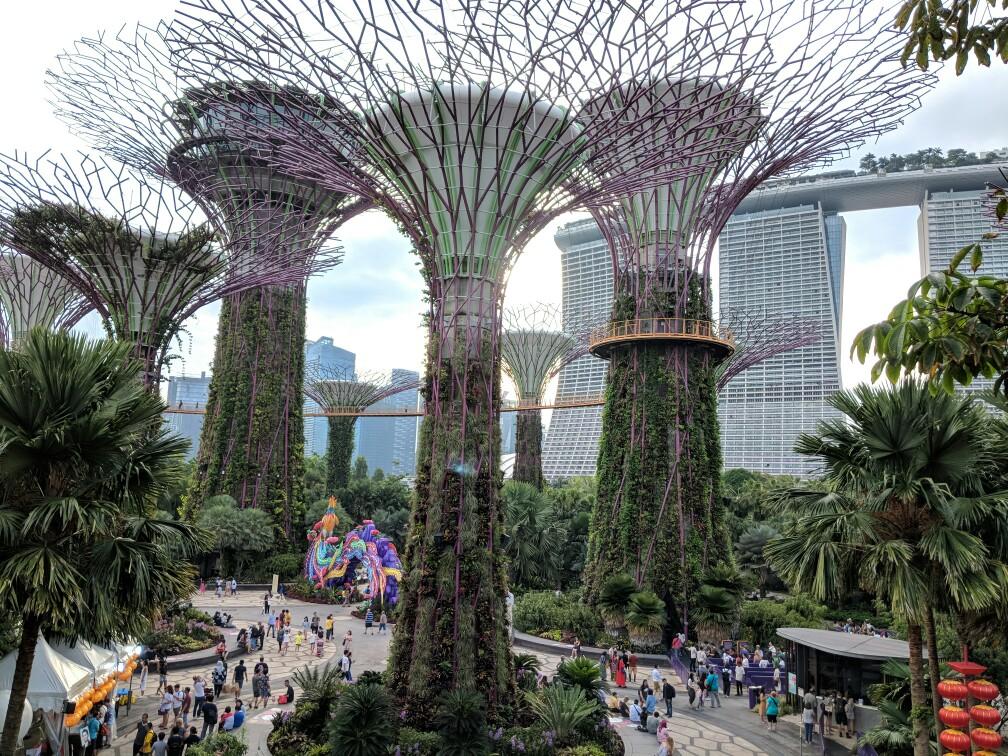 Supertrees grove à Singapour