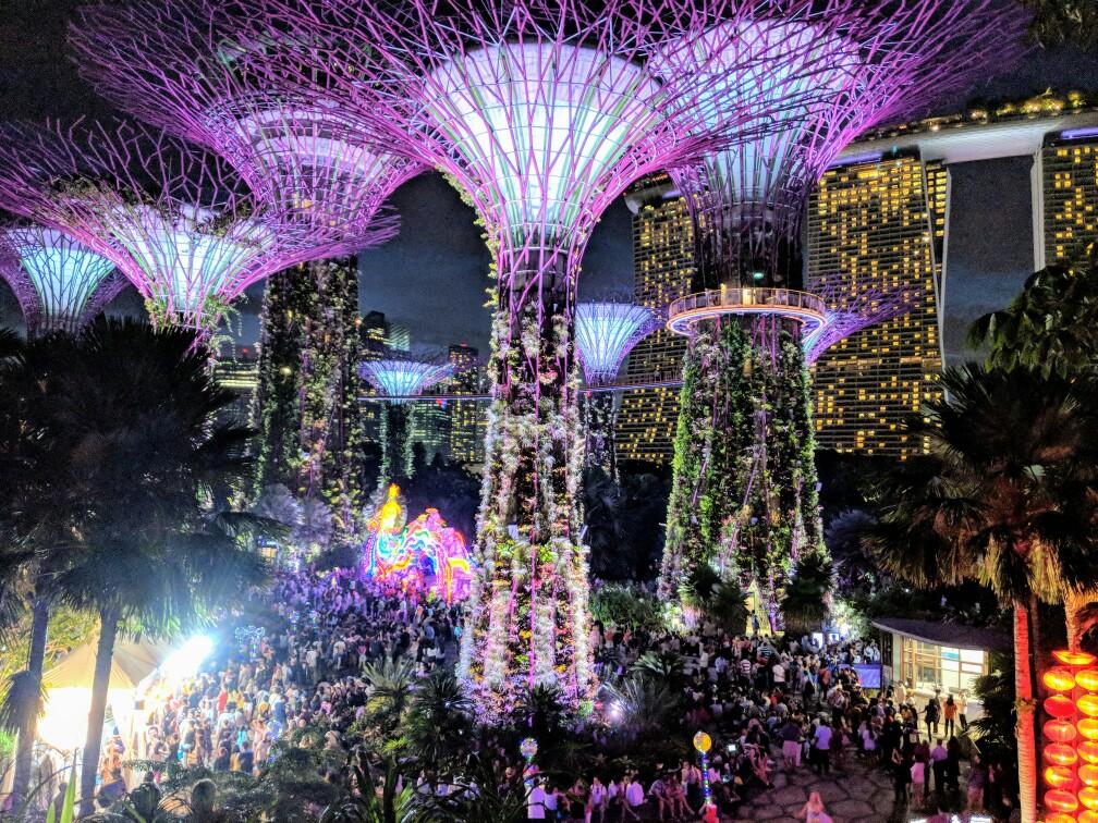 Supertrees de Singapour illuminés pendant le spectacle son et lumière de nuit