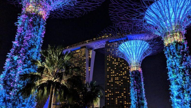Supertrees devant Marina Bay Hotel