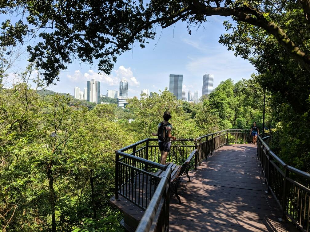 Point de vue depuis Southern Ridges Singapour