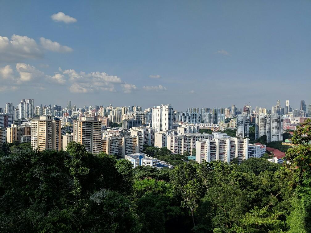 Vue sur les buildings depuis Southern Ridges Singapour