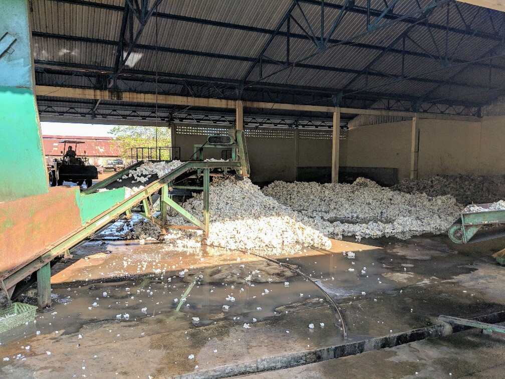 Caoutchouc lavé déposé sur le sol de l'usine près de Kampong Cham, Cambodge