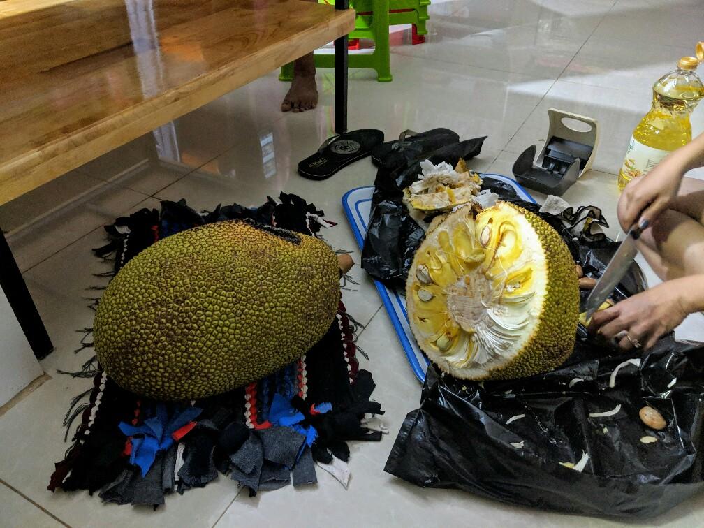 Découpage de jack fruit dans la cuisinne à Kampong Cham, Cambodge