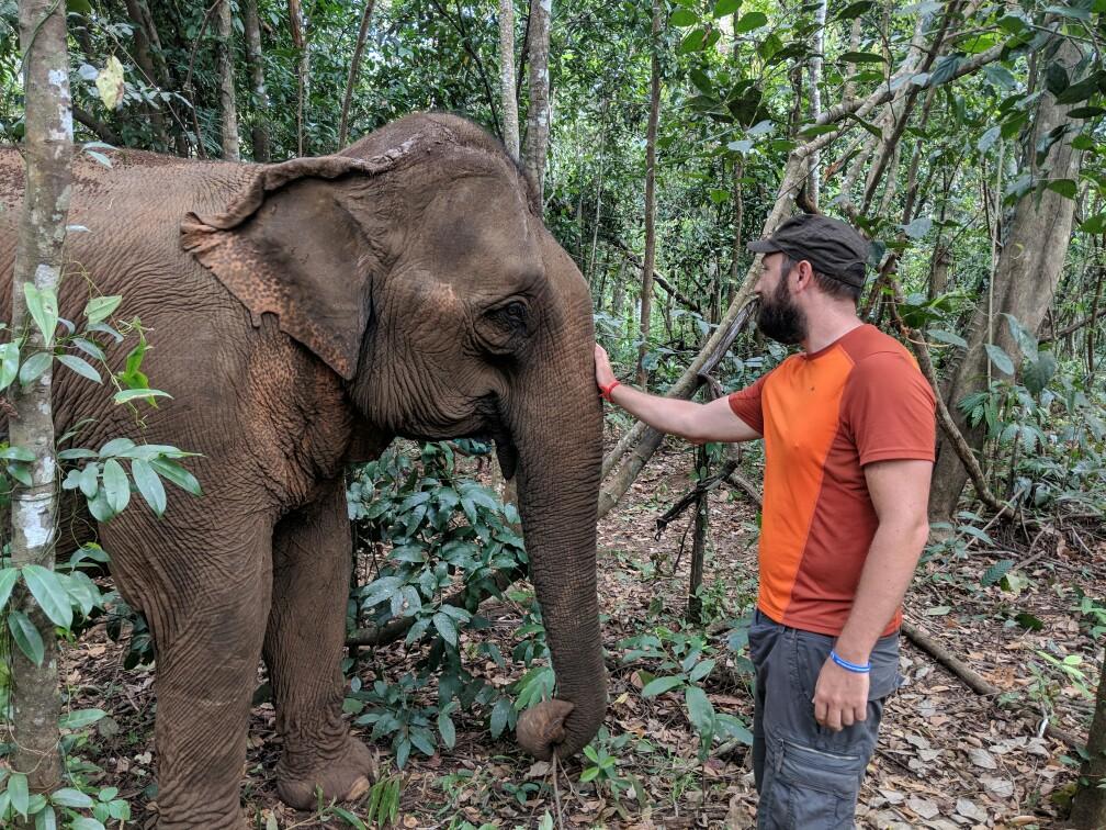 Sylvain caresse un éléphant dans la forêt près de Sen Monorom, Cambodge