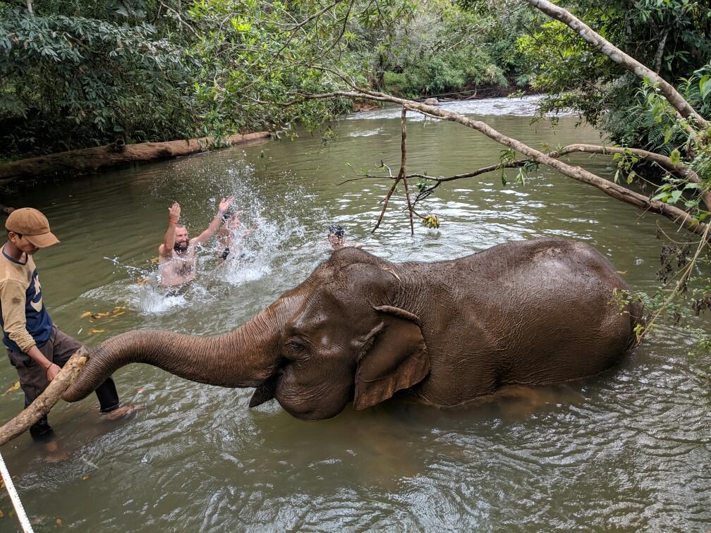 éléphant se baignant dans une rivière avec des gens