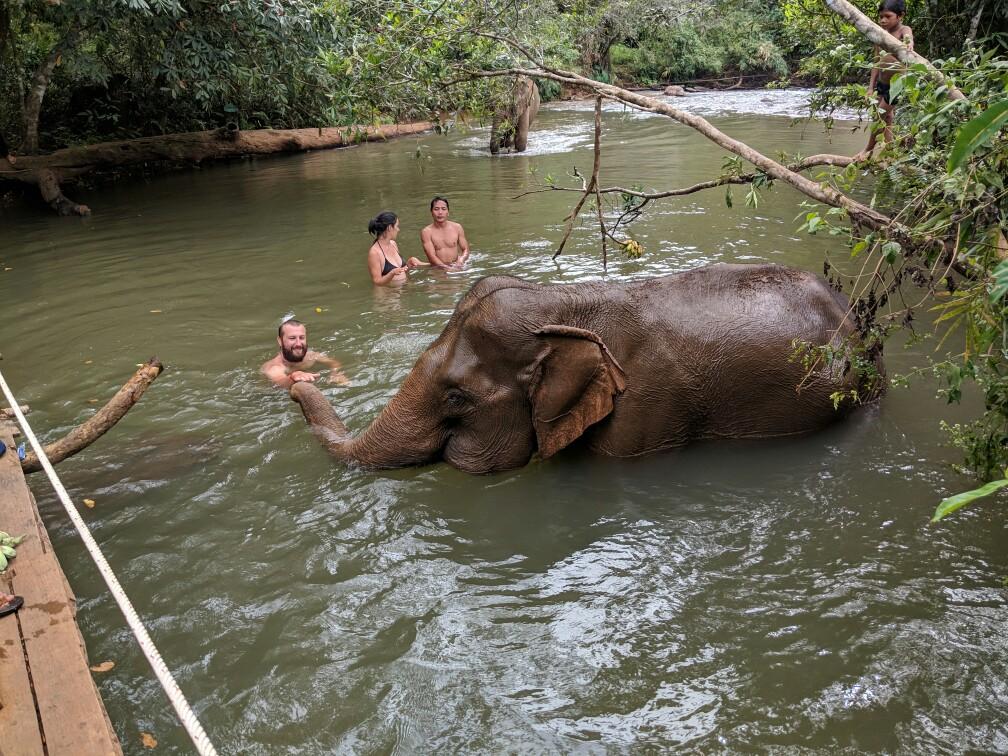 Sylvain touche la trompe dun éléphant lors du bain près de Sen Monorom, Cambodge