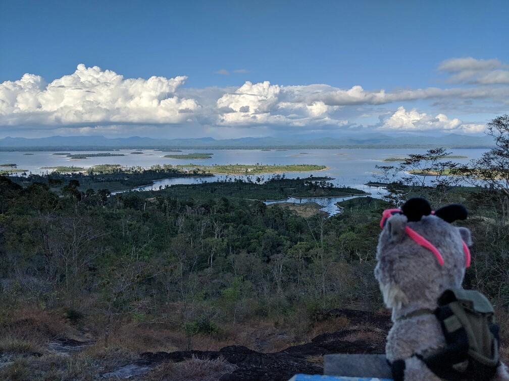 Biquette regarde le panorama offert à la fin du chemin des orchides au Laos