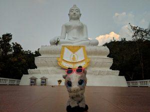 Biquette devant le Bouddha blanc de Pai, Thailande