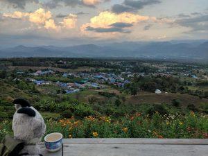 Biquette observe le panorama depuis Yun Lai, près de Pai en Thailande