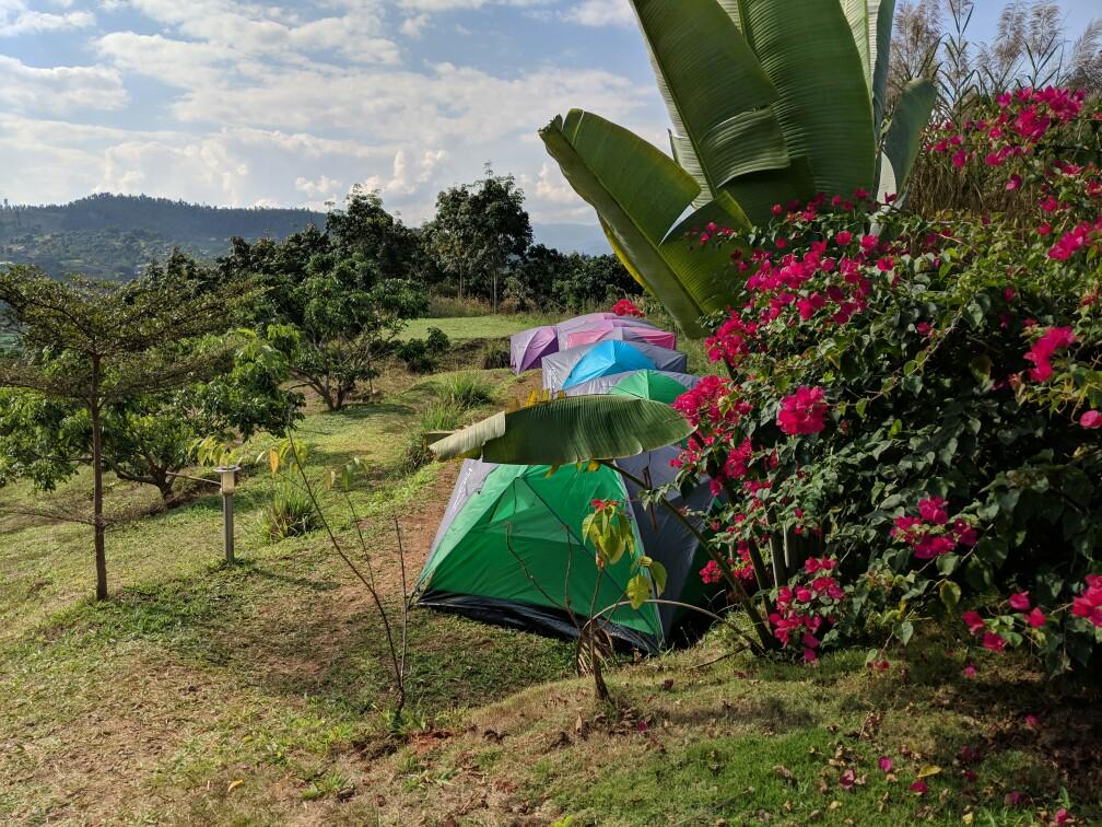 Tentes et fleurs au camping de Laurent à Mae Chaem, Thailande