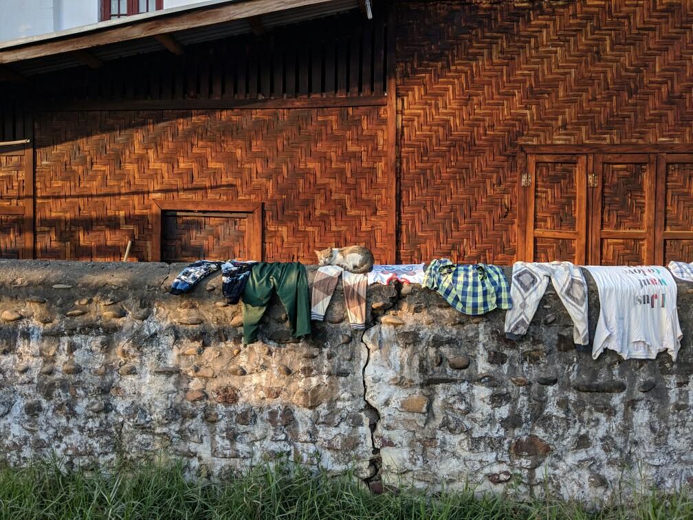 Un chat fait sa sieste sur un muret sur lequel sèchent des vêtements à Hsipaw