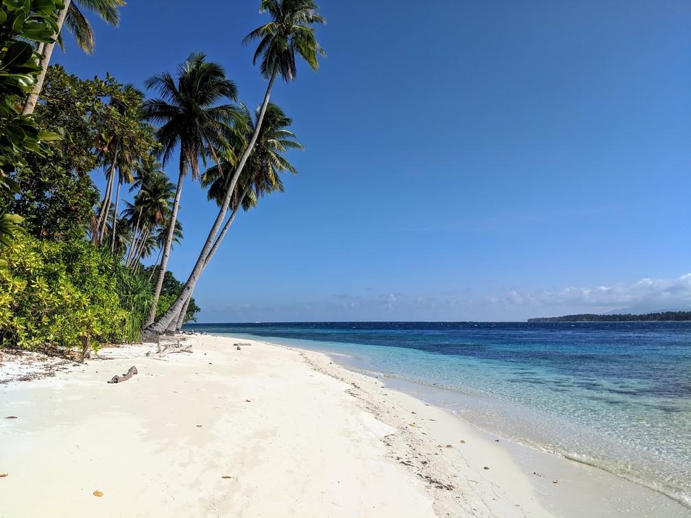 Plage de Caxisigan avec des grand cocotiers et de l'eau turquoise