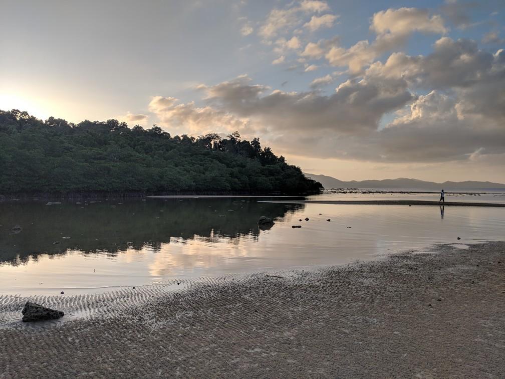 La mangrove et les nuages dorés se réfléchissent sur l'eau à marée basse