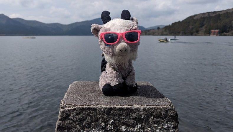La Biquette sur un plot devant le lac Ashi