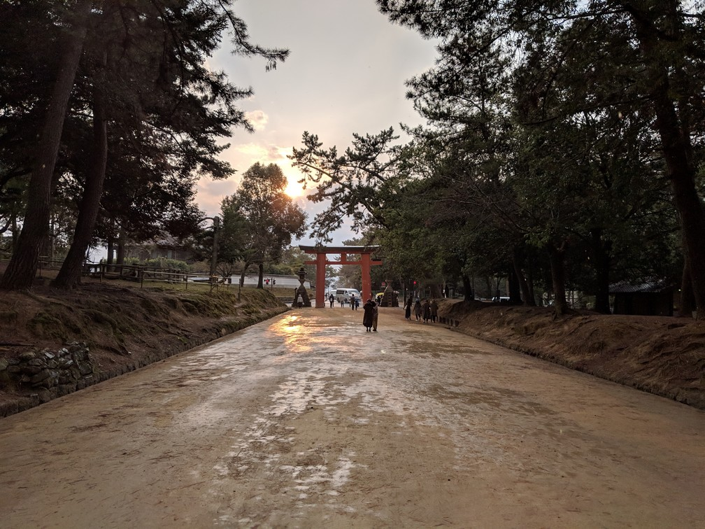 Une allée mouillée par la pluit donne sur le coucher de soleil à travers les arbres du parc de Nara