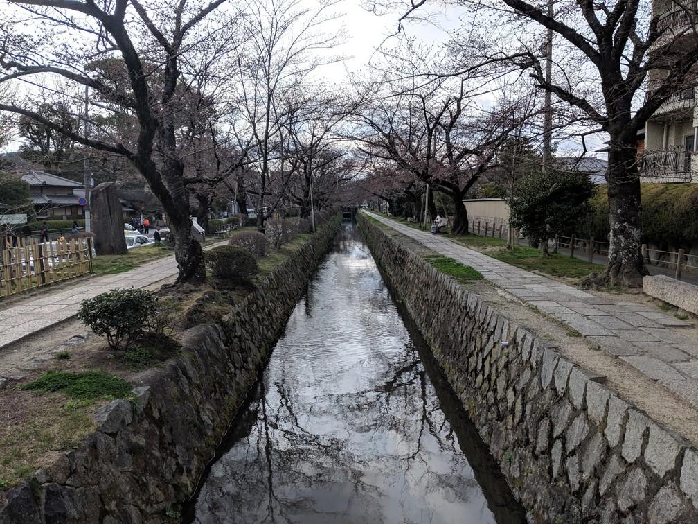 Un canal avec de part et d'autre des arbres nus