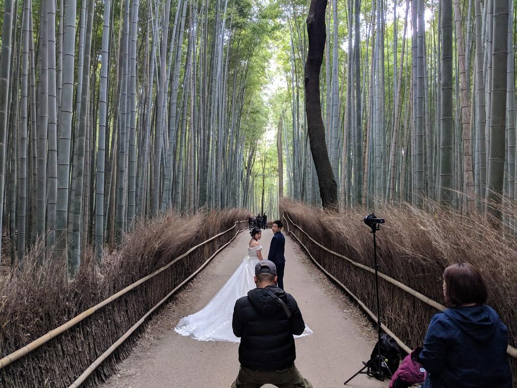 Un photographe prend des modèles de mariés dans la forêt de bambous