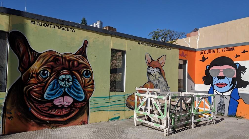 Un bulldog, un renard et un chimpanzé sont dessinés en grand sur un mur