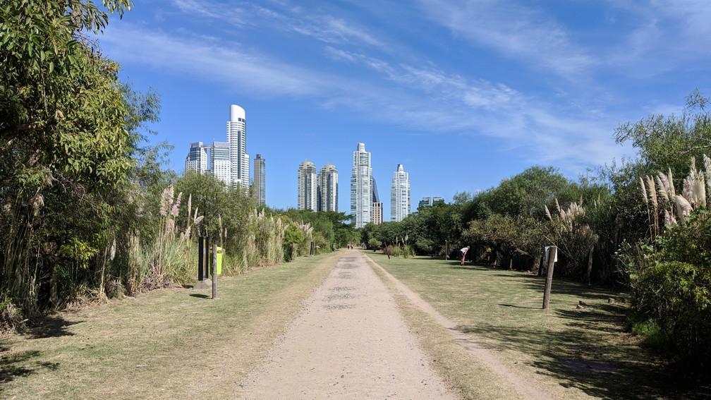 Un chemin à travers un parc avec de grands buildings en arrière-plan