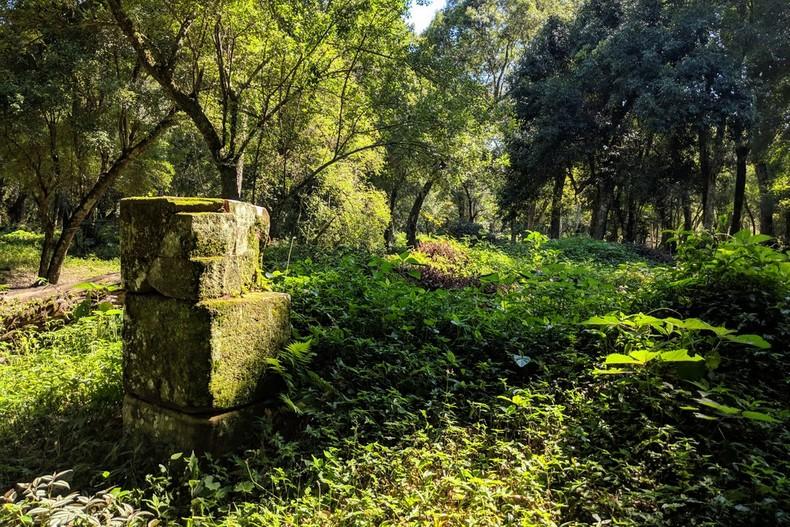 Ruines jésuites dans la jungle à San Ignacio en Argentine