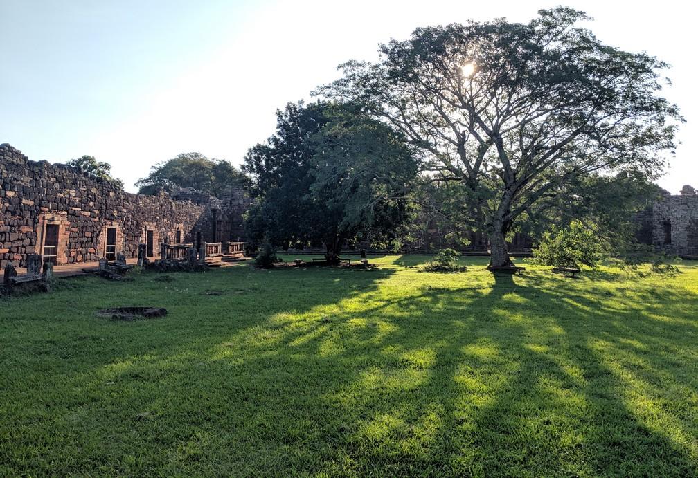 Un arbre à contre-jour au milieu des ruines de San Ignacio Mini