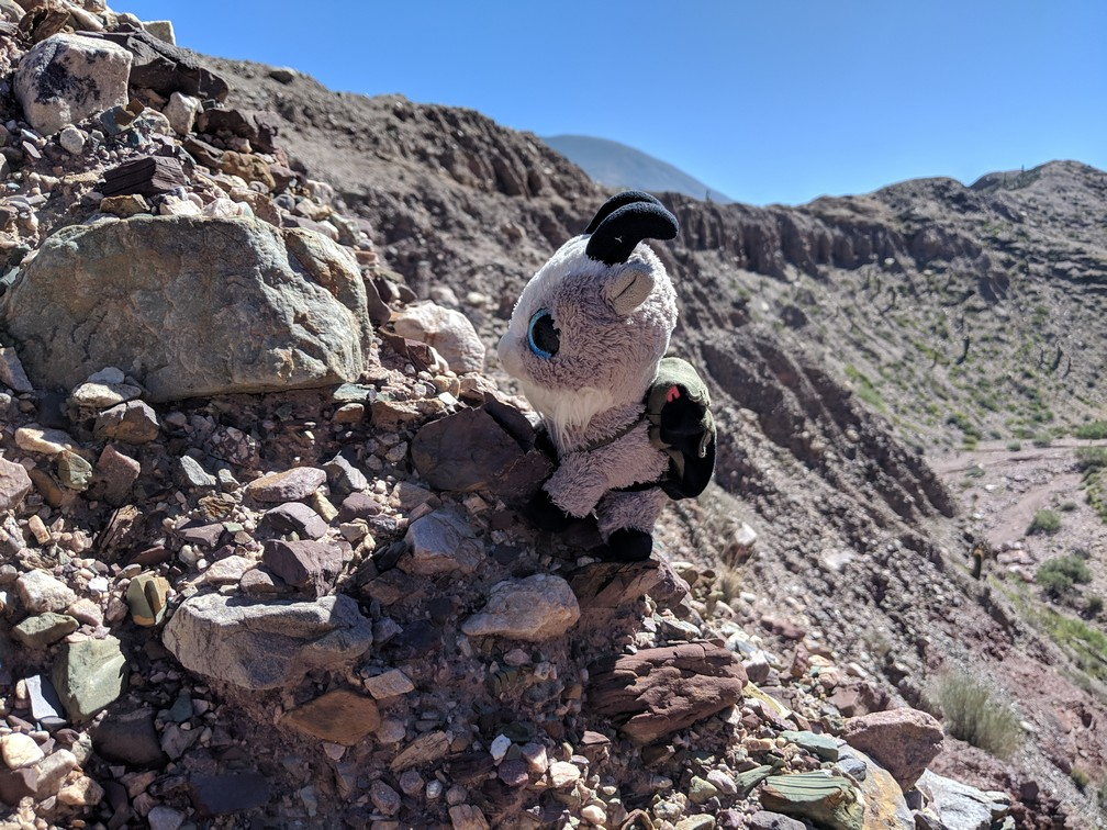 La Biquette escalade un petit rocher à Purmamarca sur la boucle nord de Salta