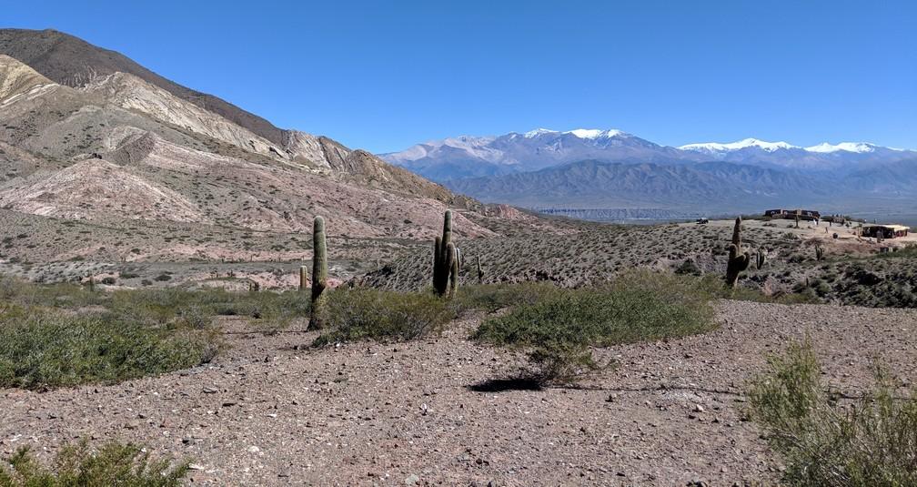 Montagnes enneigées au loin dans le parc de Los Cardones