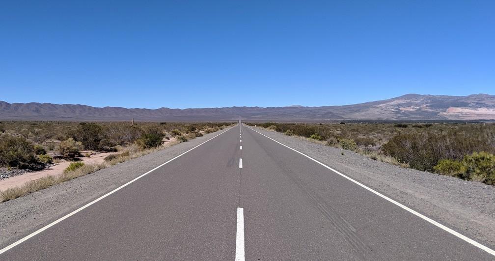 Une route toute droite à travers le paysage désertique du parc national de Los Cardones