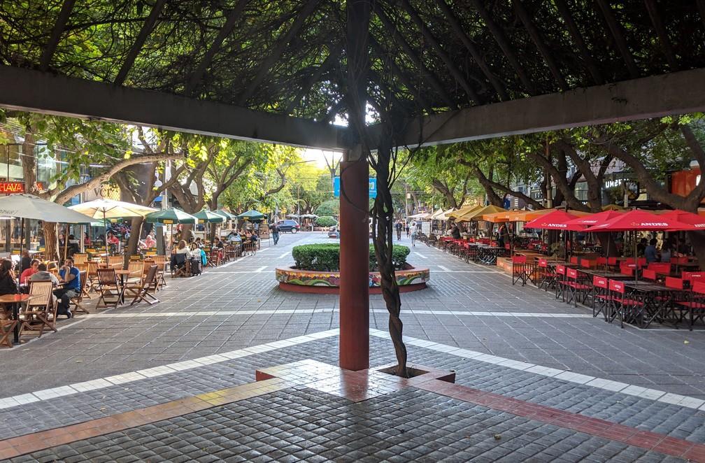 Rue piétonne bordée de terrasse à  Mendoza en Argentine