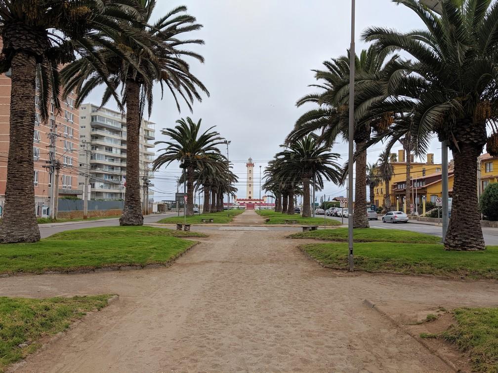 Chemin de sable entouré de palmiers, menant au phare de La Serena