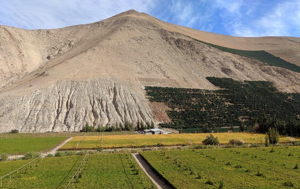 Montagne et cultures divers dans la vallée d'Elqui