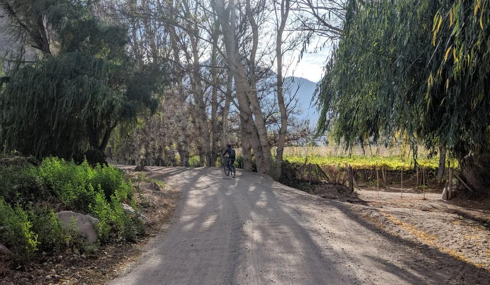 Salomé en vélo sur un chemin de gravier dans la vallée d'Elqui
