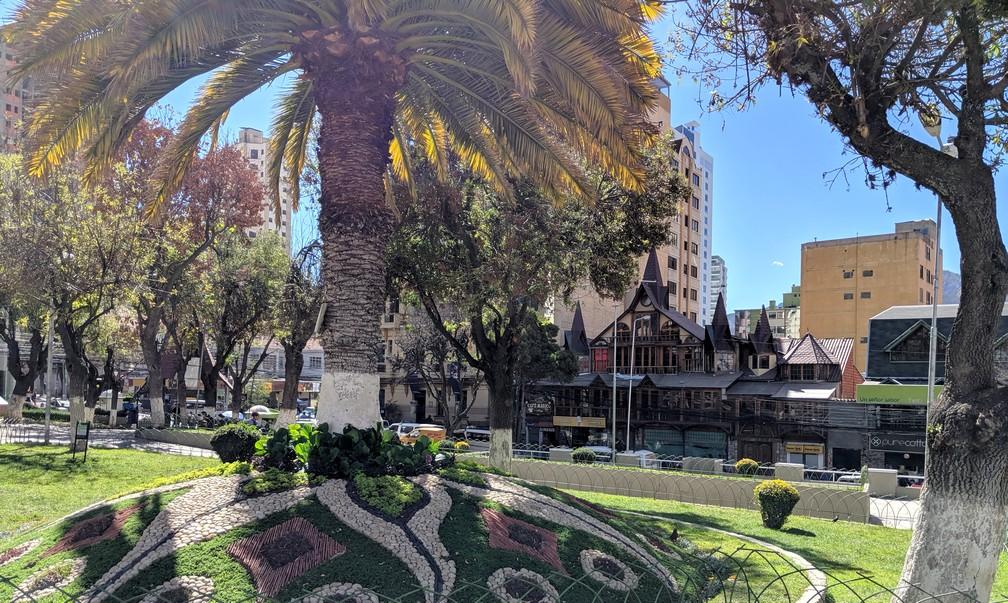 Arbre de la Plaza Avaroa avec sa pelouse à motifs