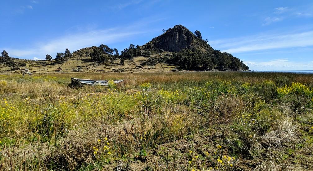 Une barque semble échouée au milieu de la végétation et des fleurs près du lac Titicaca