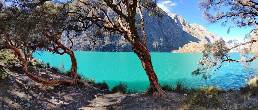 Eau turquoise et pins de la Laguna Chinan Cocha dans la cordillère blanche au Pérou