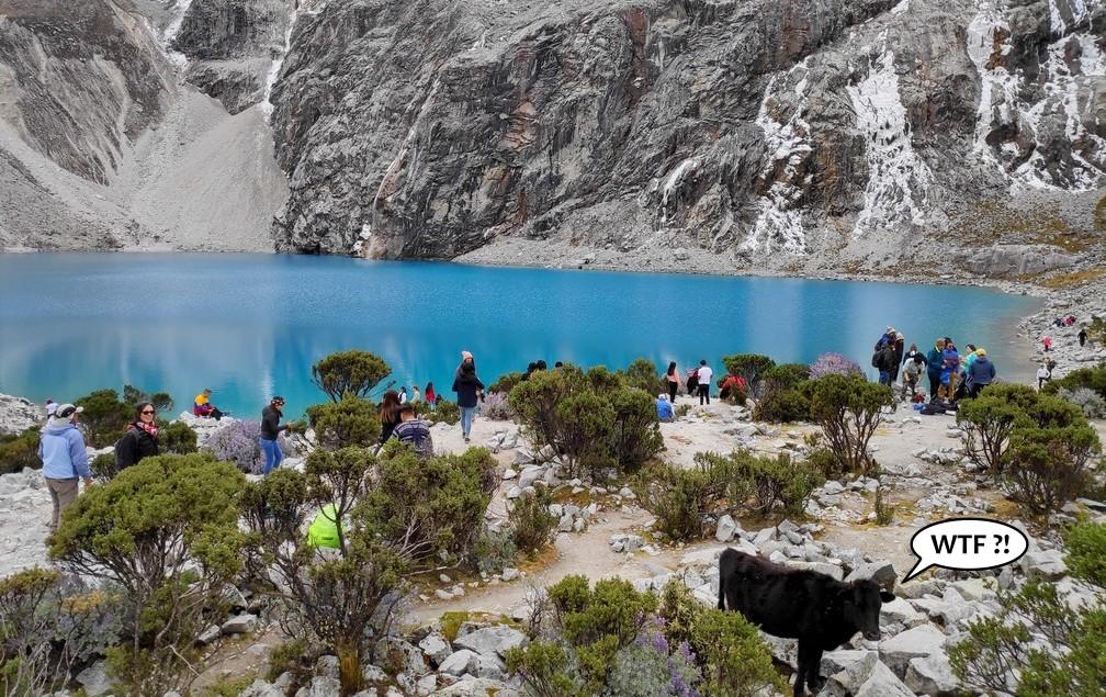 Des touristes rassemblés au bord de la lagune 69