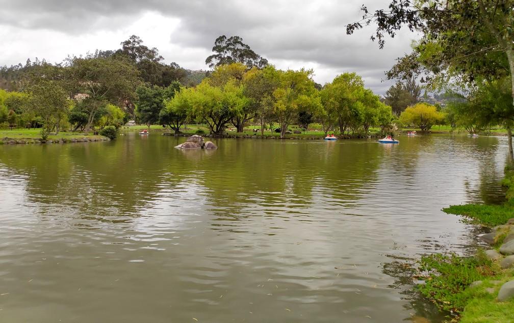 Des pédalos évoluent sur l'étang du parc de El Paraiso
