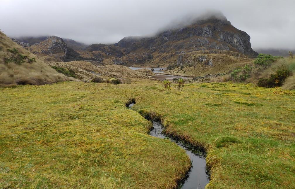 Petite rivière dans le parc Las Lajas près de Cuenca