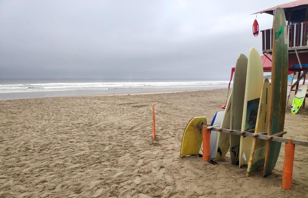Planches de surf alignées sur la plage à Montañita