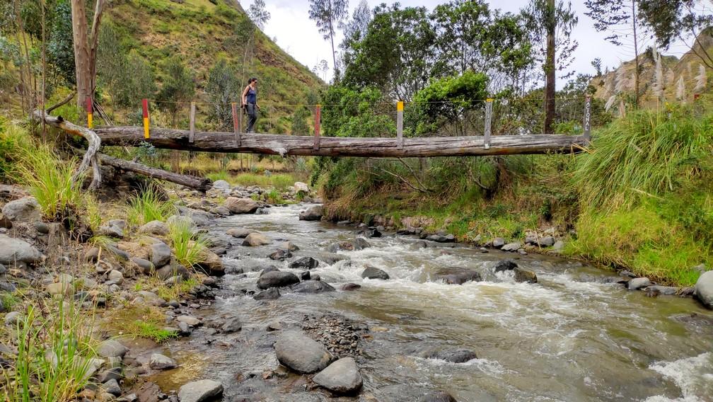 Tronc d'arbre constituant un pont qui enjambe une rivière sur la boucle de Quilotoa