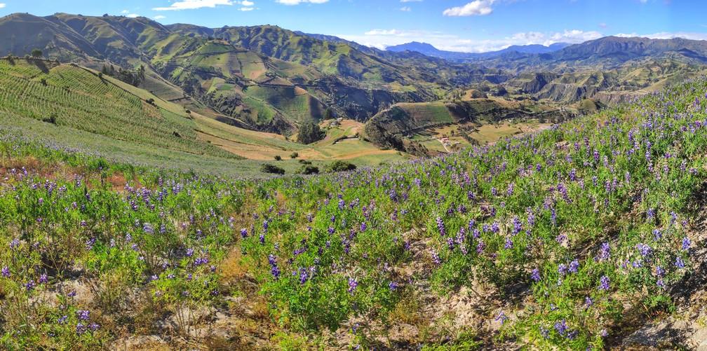 Vue sur les montagnes sur la boucle de Quilotoa