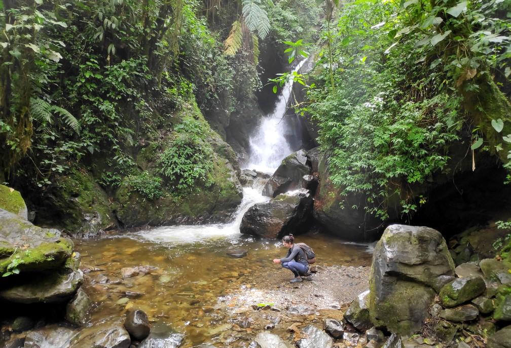 Chute d'eau et petit bassin d'eau dans la vallée de Cocora