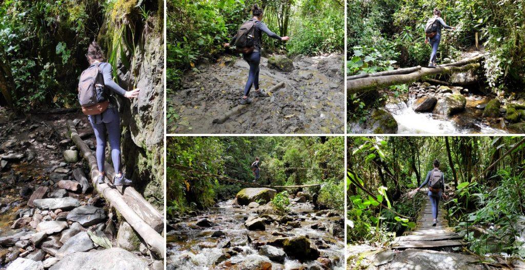 Assortiment de photos de passages dans la jungle sur la randonnée de la vallée de Cocora