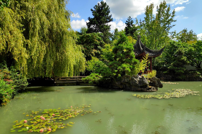 Bassin du Jardin Chinois à Vancouver