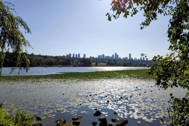 Deer lake et ses nénuphares sous le soleil de Vancouver