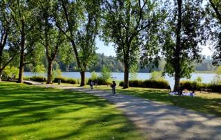Chemin au bord du Deer Lake
