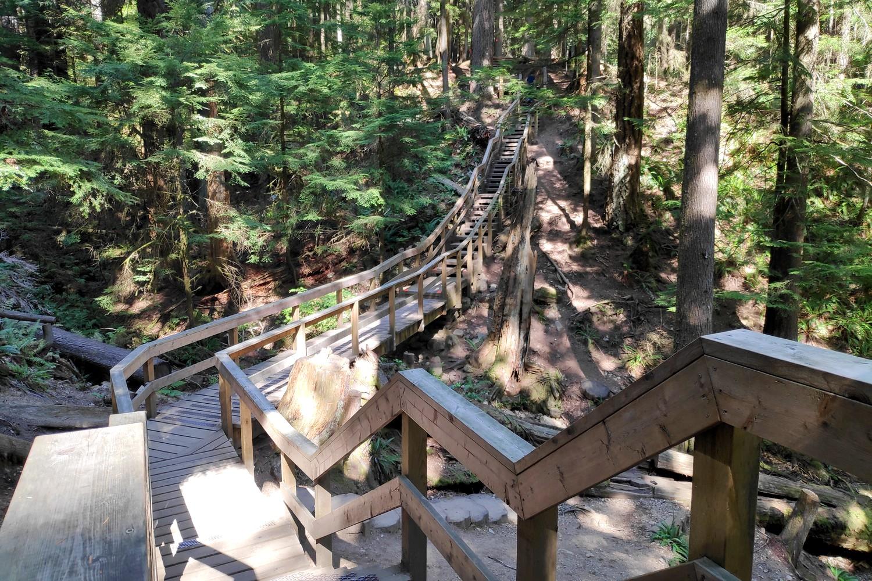 Passerelle en bois dans la forêt de Deep Cove