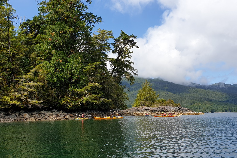 Kayaks proche d'une petite crique à Ucluelet