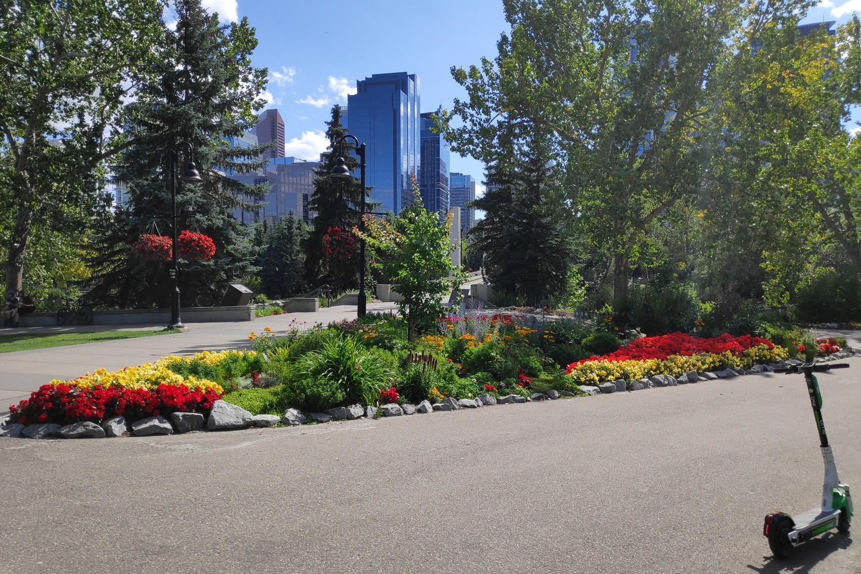 Trotinette dans un parc de Calgary